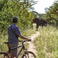 Mountain biking with Imvelo Safari Lodges near Jozibanini Camp, Hwange