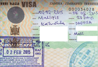 The Zim-Zam Uni-Visa is Back! – Kusini Collection
