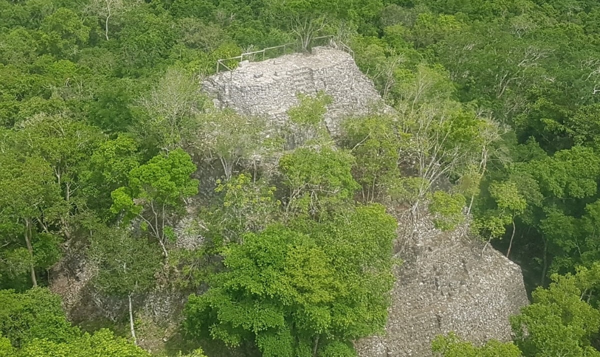 Trip Experience El Mirador Ancient Mayan Culture And Adventure Hidden In The Heart Of Guatemalan Jungle Kusini Collection