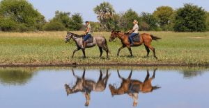 Horseback Safari Zimbabwe Africa Imvelo
