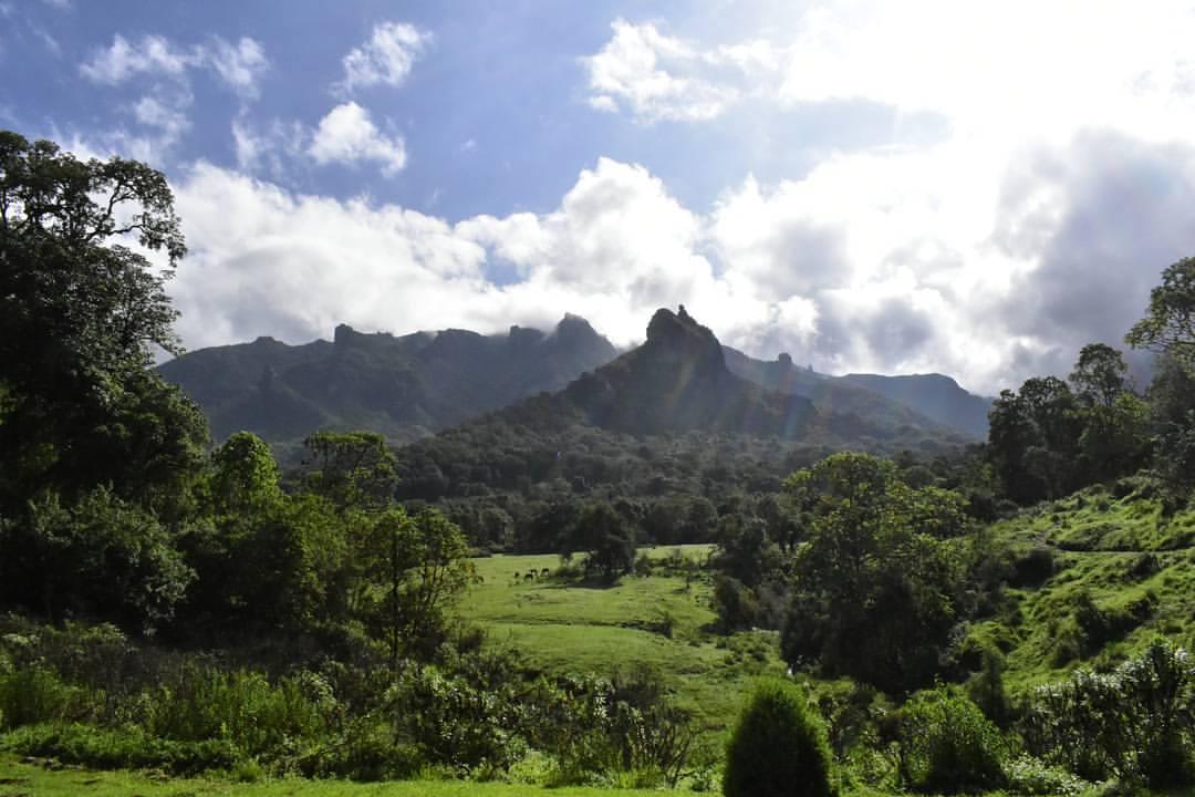 Bale Mountain Lodge Harenna Forest Travel Ehtiopia Kusini Collection
