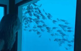 Manta Resort Pemba Underwater Room