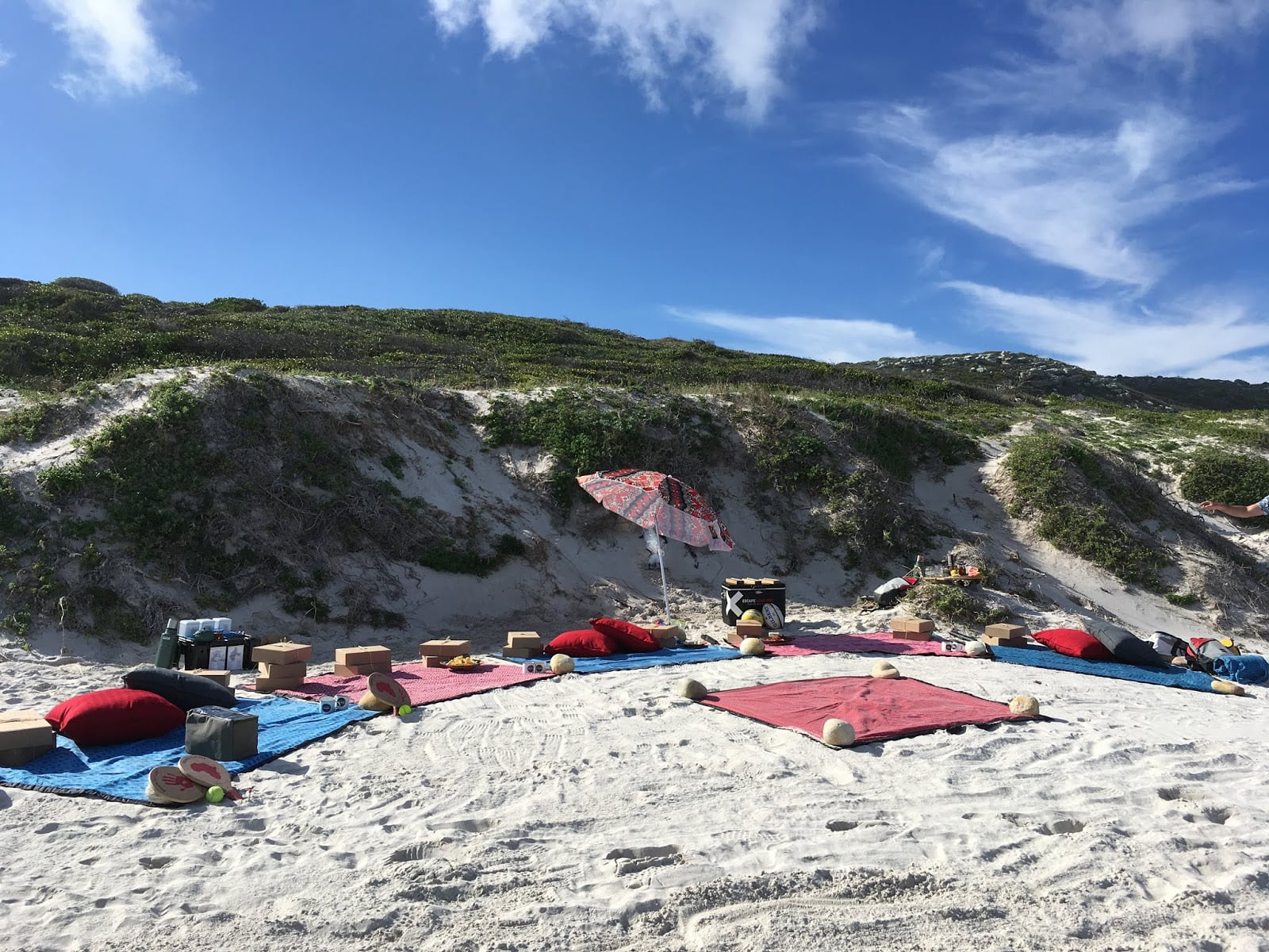 Luxury picnic near Cape of Good Hope with New Frontiers Escapes