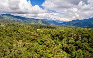 Amazon Ecuador Tropic Journeys Overlan