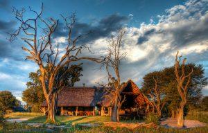 Classic safari camp Bomani Tented Lodge Hwange