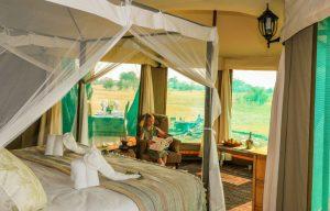 Family safari suite at Bomani Tented Lodge