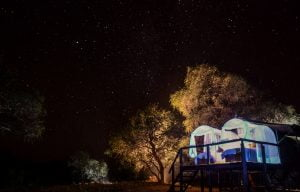 Star bed Jozibanini Camp Hwange Imvelo
