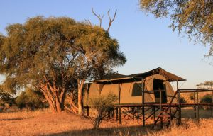 Jozibanini Camp tents adventure safari Hwange Imvelo