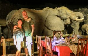 Epic elephant photo Nehimba Lodge deck