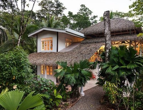 Caribbean Calling in Costa Rica – Hotel Aguas Claras