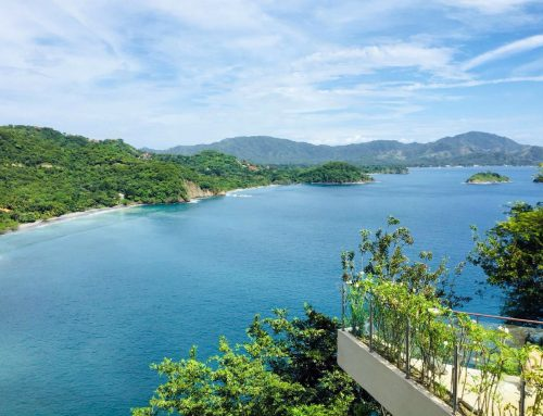 What's New on The Northern Pacific Coast of Guanacaste!
