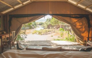 Room with a view at House in the Wild Albatros East Africa