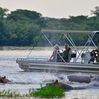 Game viewing in Murchison Falls NP on a Kingfisher boat