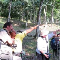 maya-trails-guatemala-yaxha-wildlife-spotting-monkeys