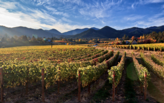 First-Nature-rogue-valley-winery-oregon