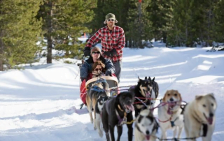 dog-sledding-oregon-first-nature-featured-image